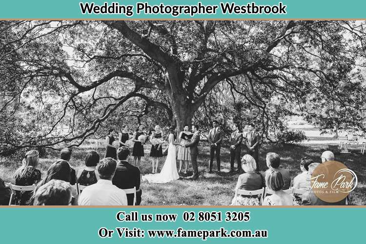 Wedding ceremony under the big tree photo Westbrook NSW 2330